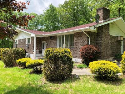 Kunkletown Single Family Home For Sale: 215 Paw Paw Dr