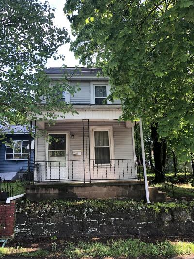 Jim Thorpe Single Family Home For Sale: 246 South Ave