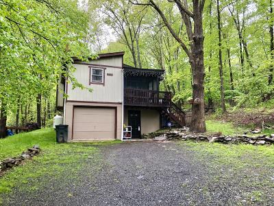 East Stroudsburg Single Family Home For Sale: 4127 Stony Hollow Drive
