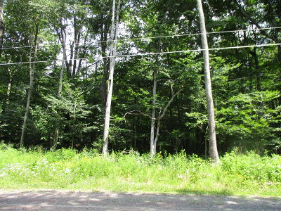Tobyhanna Residential Lots & Land For Sale: 12 Oak View Ln