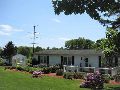 Kunkletown Single Family Home For Sale: 310 Serfass Road