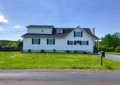 Brodheadsville Single Family Home For Sale: 124 Greenview Drive