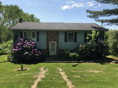 Kunkletown Single Family Home For Sale: 3225 Cherry Rd