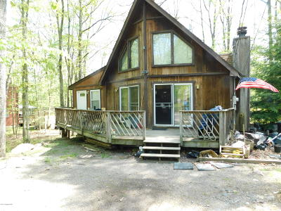 Towamensing Trails Single Family Home For Sale: 34 Pope Ln