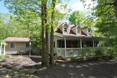 Jim Thorpe Single Family Home For Sale: 17 Recreation Ct