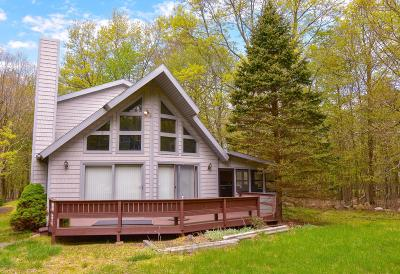 Towamensing Trails Single Family Home For Sale: 59 Caedman Drive