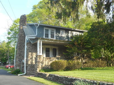 Canadensis Single Family Home For Sale: 2417 N Route 390