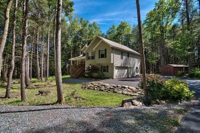 Pocono Lake Single Family Home For Sale: 176 Sir Bradford Rd