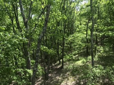 Saylorsburg Residential Lots & Land For Sale: #102 Wilson Ct