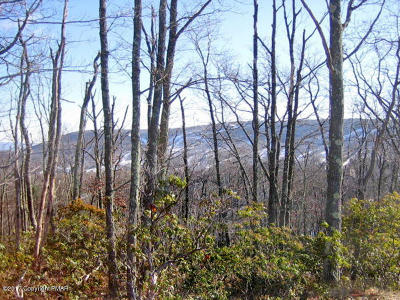 Tannersville Residential Lots & Land For Sale: 23 Camelback Dr