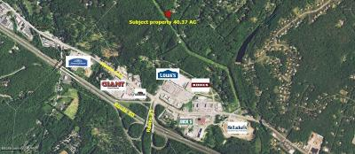 Stroudsburg Commercial For Sale: T 494 Frantz Rd