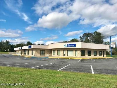 Brodheadsville Commercial For Sale: 208 Kevin (Front) Lane