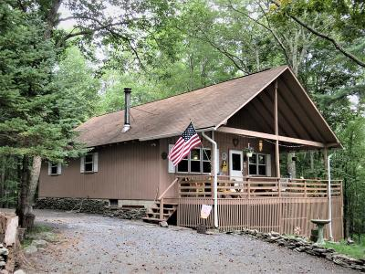 East Stroudsburg Single Family Home For Sale: 4172 Elderberry Lane