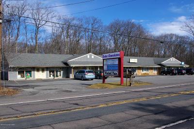 Pocono Summit Commercial For Sale: 2557 Route 940