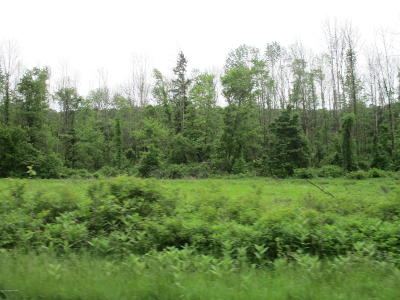 Saylorsburg Residential Lots & Land For Sale: 2266 Route 209 Rte