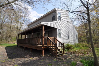 Jim Thorpe Single Family Home For Sale: 109 Cold Spring Dr