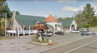 East Stroudsburg Commercial For Sale: 5261 Milford Rd