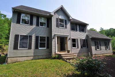 Jim Thorpe Single Family Home For Sale: 33 Flagstaff Rd
