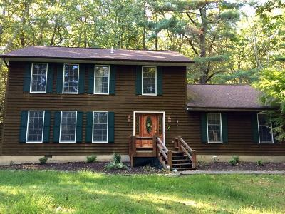Tannersville Single Family Home For Sale: 160 Cobble Creek Dr