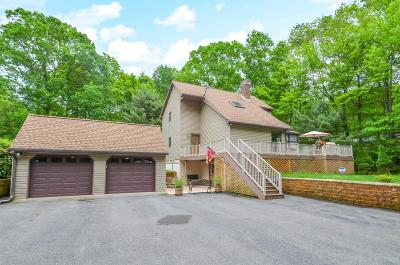 Saylorsburg Single Family Home For Sale: 320 Blue Ridge Rd