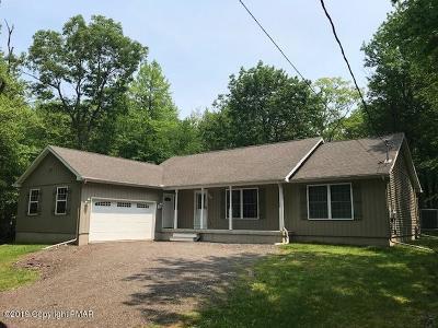 Jim Thorpe Single Family Home For Sale: 22 Locust Dr