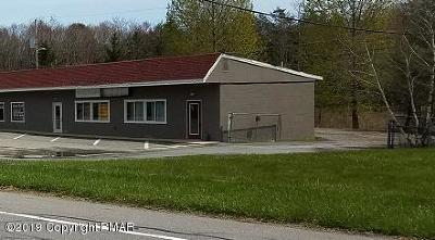 Pocono Lake Commercial For Sale: 906 Route 940