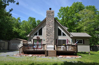 Albrightsville Single Family Home For Sale: 25 Uffleman Ln