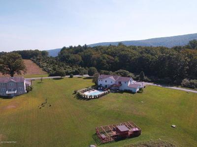 Saylorsburg Single Family Home For Sale: 204 Bittenbender Dr