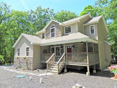 Bushkill Single Family Home For Sale: 914 Thrasher Court