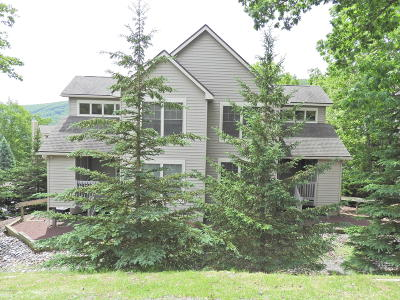 Tannersville Single Family Home For Sale: 435 Maple Ct