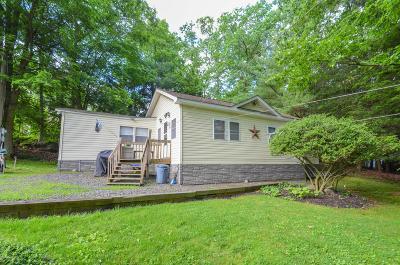 Saylorsburg Single Family Home For Sale: 534 Sage Ln