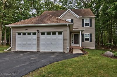 East Stroudsburg Single Family Home For Sale: 318 Witness Tree Ct
