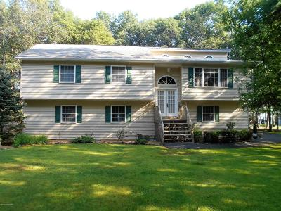 Towamensing Trails Single Family Home For Sale: 5 Byron Lane