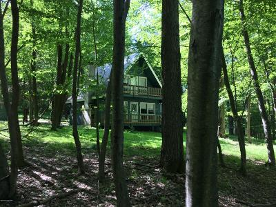Locust Lake Village Single Family Home For Sale: 37 Mountain View Dr