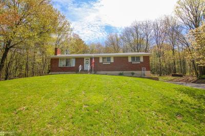 Palmerton Single Family Home For Sale: 45 Margaret St