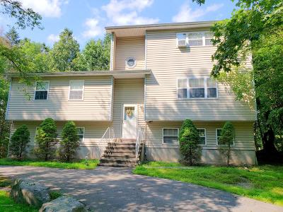 East Stroudsburg Single Family Home For Sale: 106 Clover Lane