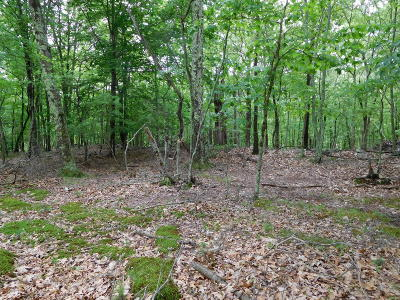 Bushkill Residential Lots & Land For Sale: Lot 199 Sec 1b Porcupine Ct