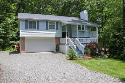Mount Pocono Single Family Home For Sale: 50 Seneca Rd