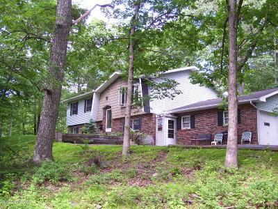 Tannersville Single Family Home For Sale: 234 Hemlock Rd