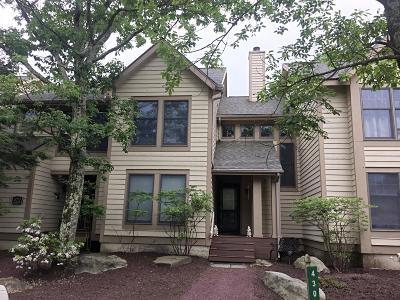 Tannersville Single Family Home For Sale: 430 Birch Ct