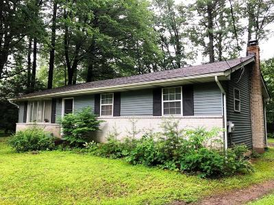Kunkletown Single Family Home For Sale: 5172 Pine St