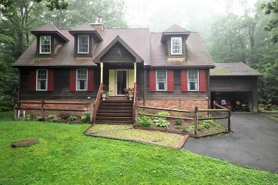 Cresco Single Family Home For Sale: 353 Ridge Circle