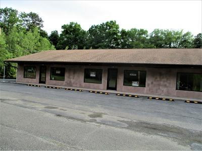 Monroe County Commercial For Sale: 6183 191 Rte