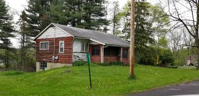 East Stroudsburg Single Family Home For Sale: 1035 Mt Tom Rd