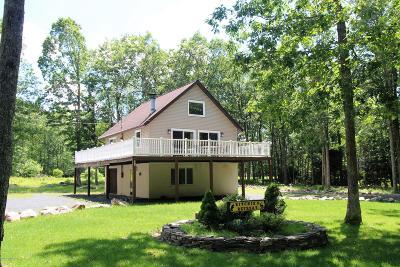 Jim Thorpe Single Family Home For Sale: 44 Poplar Drive