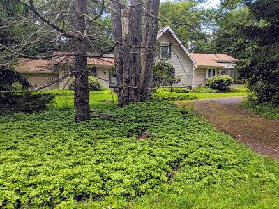 Tobyhanna Single Family Home For Sale: 1271 Kilmer Rd
