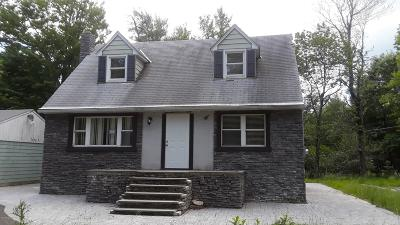 Pocono Summit Single Family Home For Sale: 4115 Sylvan Ln