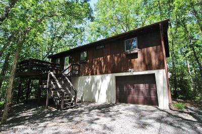 Towamensing Trails Single Family Home For Sale: 14 Dryden Dr