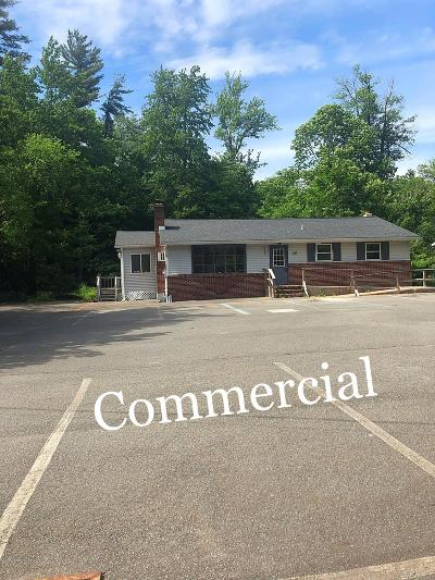 Pocono Lake Commercial For Sale: 367 Route 940 Rte
