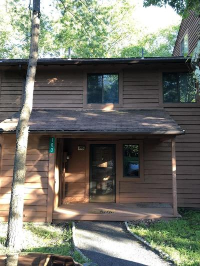 East Stroudsburg Single Family Home For Sale: 103 Woods